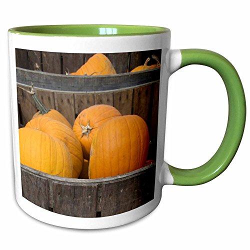 3dRose Danita Delimont - Farms - Massachusetts, Natick, Lookout Farm, pumpkins - US22 LEN0255 - Lisa S. Engelbrecht - 11oz Two-Tone Green Mug - Natick Outlets