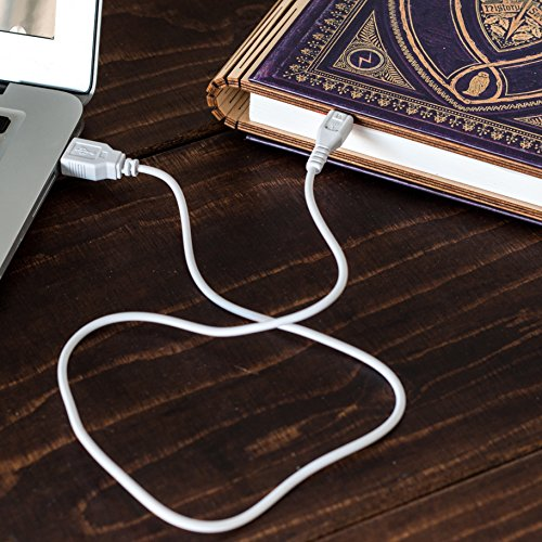 Harry Potter Themed Book of Spells Folding 360 Degree Chargeable Reading Lamp, Night Light, Desk, Bedside or Travel Light.