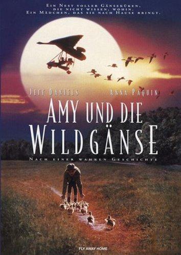 Amy und die Wildgänse Film