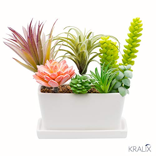 Succulent Planter Ceramic Containers, Cactus Planters, Flower Pots with Drainage Hole and Tray, White Rectangular Planter