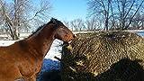 Round Bale Slow Feed Hay Net 6x6 1 3/4 Hole