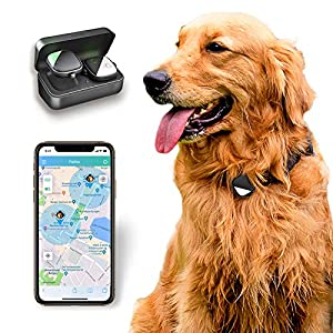 PETFON Pet GPS Tracker(iOS ONLY), Real-Time Tracking Device,No Monthly fee, APP Control for Dogs Click on image for further info.