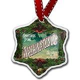 Christmas Ornament Greetings from Washington DC , Vintage Postcard - Neonblond