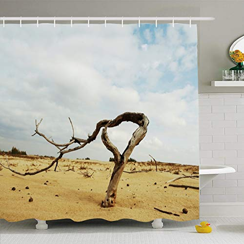 (Ahawoso Shower Curtain 72x78 Inches Nature Alone Drily Tree Sand Desert Adventure Explore Parks Arid Barkhan Barren Cast Color Design Old Waterproof Polyester Fabric Bathroom Curtains Set with Hooks)