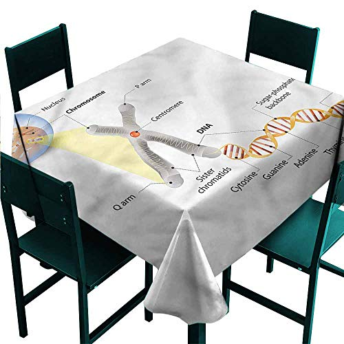 DONEECKL Dust-Proof Tablecloth Educational DNA Gene Genome Soft and Smooth Surface W36 - Dust Dna