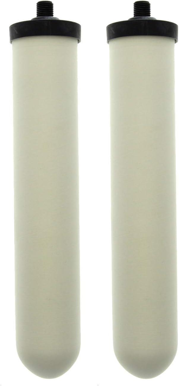 Doulton W9123019 UltraCarb SI - Filtro de agua de cerámica: Amazon ...