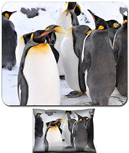 (Luxlady Mouse Wrist Rest and Small Mousepad Set, 2pc Wrist Support design IMAGE: 26964068 King Penguin Colony at the Asahiyama Zoo Japan )
