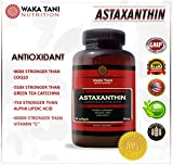 Astaxanthin Powerful Antioxidant amp Anti-inflammatory Keto Carotenoid Supports Joints Blood Skin amp Eye Health One a day formula 10 mg 90 softgels produced from microalgae Haematococcus Pluvialis Discount