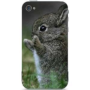Unique Personalised Customised iPhone 4 4s Plastic Case Floppy Ear Rabbit Bunny