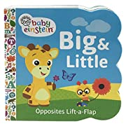 Baby Einstein: Big and Little (Sturdy Lift a Flap Board Book)