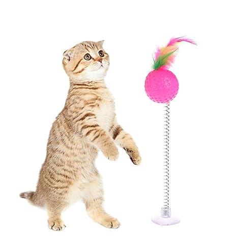 Amazon.com: Forgun gato Teaser Tumbler ventosa soporte ...