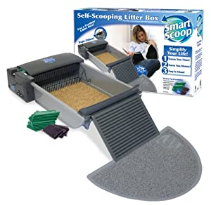 Cat Litter Cleaning Service