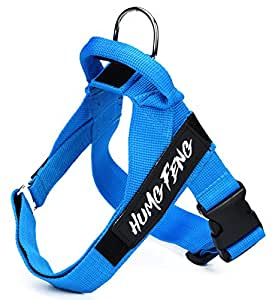 Amazon.com : Dog Harness - Heavy Duty - Adjustable