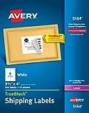 Avery Shipping Address Labels, Laser Printers, 690 Labels, 3-1/3x4 Labels, Permanent Adhesive, TrueBlock (5164)
