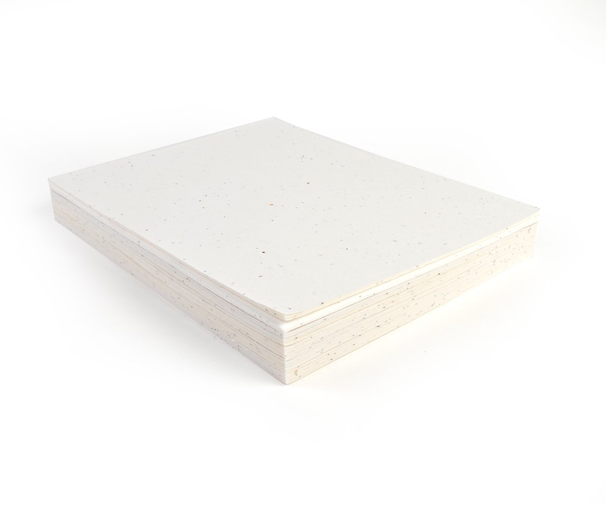 Bloomin Signature 10 pt. Seed Paper for Inkjet Printers - 50-75% Germination Rate - 8.5x11 Sheets (1 Pack- 50 Sheets)