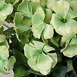 BalsaCircle-72-Apple-Green-Silk-Primrose-Flowers-4-Bushes-Artificial-Flowers-Wedding-Party-Centerpieces-Arrangements-Bouquets-Supplies