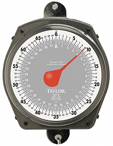 Mechanical Hanging Scale, 32kg/70 lb, Dial