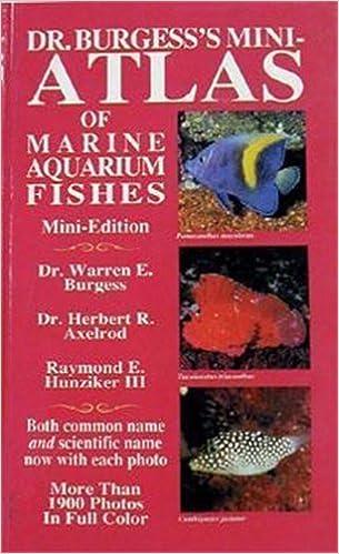 Dr Burgess S Mini Atlas Of Marine Aquarium Fishes Warren E