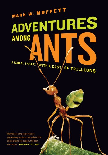 Image of Adventures among Ants: A Global Safari with a Cast of Trillions
