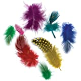Guinea Plumage Feathers .10 Ounces-Vibrant