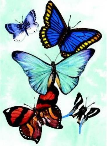 Butterfly Notebook (Decorative Notebooks)