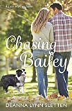 Chasing Bailey: A Lake Harriet Novel