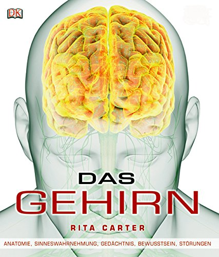 Das Gehirn: Anatomie, Sinneswahrnehmung, Gedächtnis, Bewusstsein ...