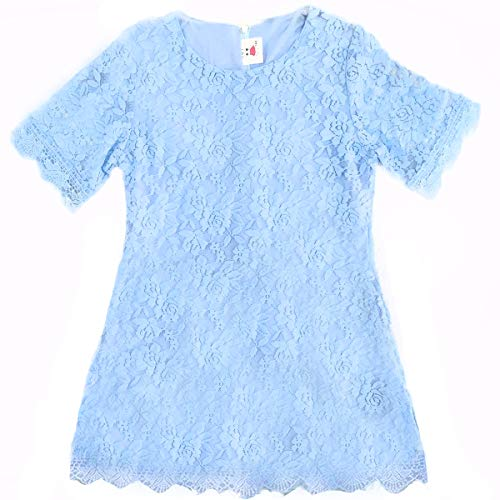 Girl Lace Flower Easter Dress Kids Ruffles Party Wedding Bridesmaid Short-Sleeve Dresses(Sky blue160)
