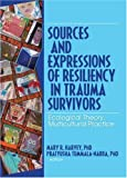 Sources and Expressions of Resiliency in Trauma Survivors, , 078903462X