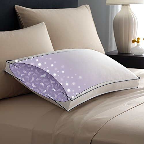 Price comparison product image Pacific Coast Double DownAround Firm Pillow 300 Thread Count 550 Fill Power Down & Resilia Feathers - King