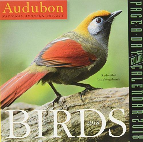 Audubon Birds Page-A-Day Calendar 2018 cover