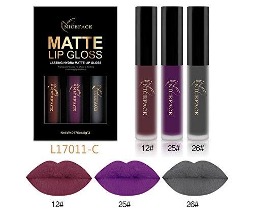 CASA SHOP 3Pcs/Lot Matte Long-lasting Lipstick Liquid Set C