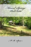 download ebook mineral springs road 1940s (memory is my name) pdf epub
