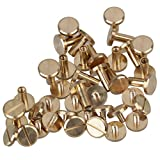 Solid Brass Flat Head Nail Rivets Chicago Screws for DIY Leather Craft Purse Pack of 20 (10x4x10mm)