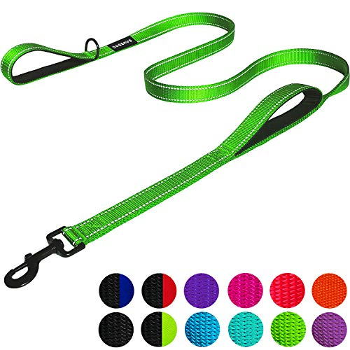 Dog Leash 6ft Long - Traffic Padded Two Handle - Heavy Duty - Double Handles Lead for Training Control - 2 Handle Leashes for Large Dogs or Medium Dogs - Reflective Pet Leash Dual Handle (Light Green)