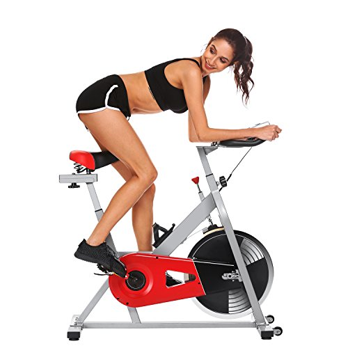 Ultrar Sport Pro Indoor Cycling Bike, Magnetic Cycling Trainer Exercise Bicycle With 40 lb Flywheel (US Stock) (Silver and Red)