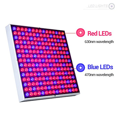 ANNT 45W LED Plant Grow Light Panel Growth Lamp Red Blue