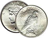 1 - Peace Silver Dollar Mid-1920's Dated Dollar Extra Fine or Be