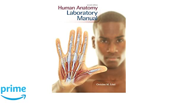 Human Anatomy Lab Manual Christine M Eckel Biology Instructor