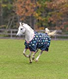 Shires Tempest Original Lite Horse Sheet-Cow Print-84