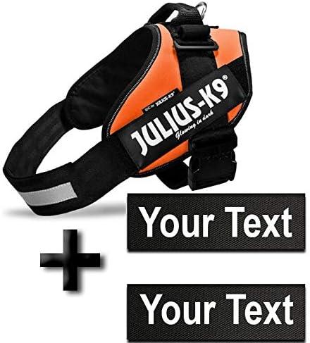 2 Etiquettes personnalis/ées Mini-Mini Poitrail : 40-53cm JULIUS K9 harnais Orange