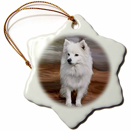 3drose American Snowflake Porcelain Ornament