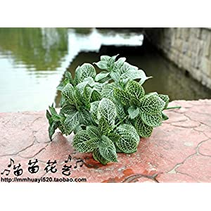 FYYDNZA 1 Pc Artificial Leaf Net Plant Leaf 40 Cm 7 Branches Artificial Plant Green Flowers Plant Grass For Home Deocration 3