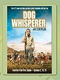 Dog Whisperer - Favorites Season One, Vol.2
