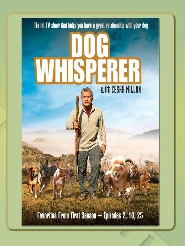Dog Whisperer - Favorites Season One, Vol.2 - Whisperer Cesar Dog Millan