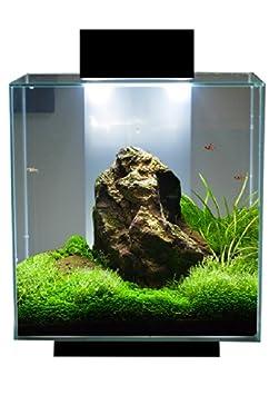 Amazon.com : Fluval Edge 18 Watt Ultrabrite Led System Upgrade Planted Tank  : Fluval Edge Led : Pet Supplies
