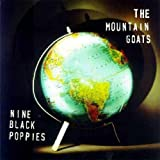 : Nine Black Poppies