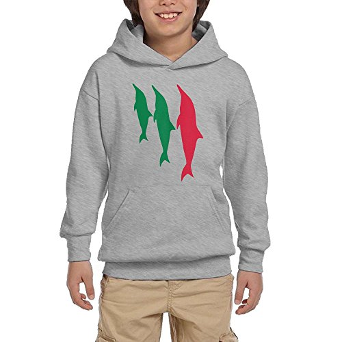 Child Disco Dolly (Artphoto Youth's Funny Dolphines Hoodies Sweatshirt Suitable for 10 to 15 Years Old\r\n L Ash)