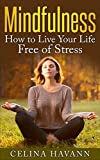 Mindfulness: How to Live Your Life Free of Stress (Mindfulness for Beginners, Stress Free, Happiness, Relaxation, Anxiety Free,)
