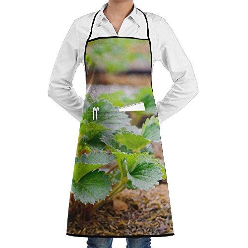 ZheuO Farmer Planting Strawberry Grill Aprons Kitchen Chef Bib Classic For Men Women (San Francisco Giants Pinstripe)